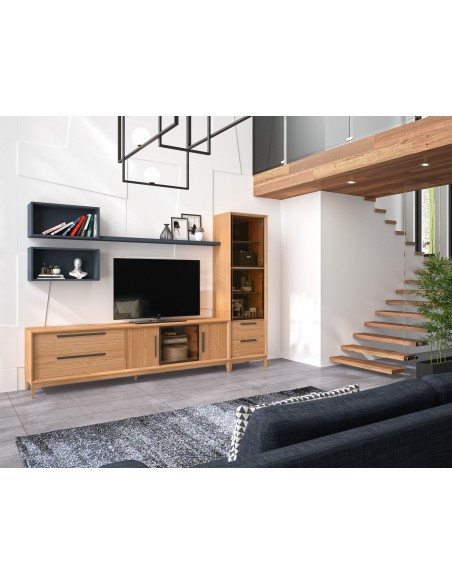 Mueble de salón 19C de estilo nórdico-industrial de Divogue