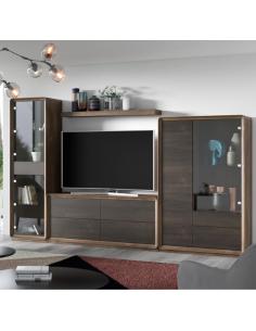 Mueble de salón Curve XT 12