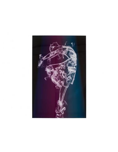 Cuadro bailarina - Ref.16300